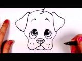 Drawing A Cartoon Chihuahua How to Draw A Cartoon Face Funny Face Drawing Lesson Youtube 1