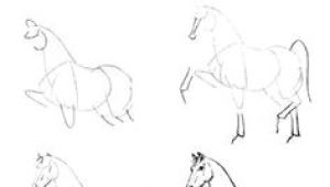 Drawing A Cartoon Horse Step by Step 64 Best How to Draw Horses Images