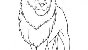 Drawing A Cartoon Lion How to Draw A Cartoon Lion Step by Step Drawing Tutorials for Kids