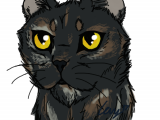 Drawing A Cat Quickly Does Imgur Like My Quick Drawing Of My Cat Album On Imgur