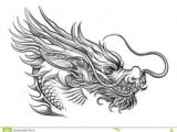 Drawing A Chinese Dragons 997 Best asian Dragons Images In 2019 Japanese Tattoos Japanese