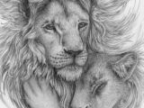 Drawing A Lions Eye Wrap Up Your Whispering Eyes by Avestra Animal Drawings