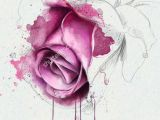 Drawing A Pink Rose Watercolor Rose Google Zoeken Painting Watercolor Watercolor
