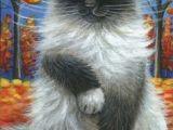 Drawing A Ragdoll Cat 1776 Best Ragdoll Images Beautiful Cats Kittens Cutest Pretty Cats