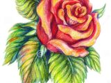 Drawing A Realistic Rose Step by Step 25 Beautiful Rose Drawings and Paintings for Your Inspiration