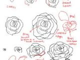 Drawing A Realistic Rose Step by Step How to Draw A Rose Dr Odd