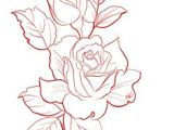 Drawing A Rose In Illustrator Rose Outline Google Search Outlines Drawings Art Flowers