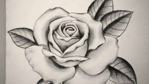 Drawing A Rose Tattoo Pin by Sydney Mayes On Tattoo Tattoos Rose Tattoos Rose Drawing