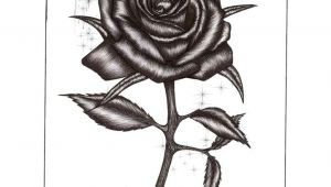 Drawing A Rose with Pen Rose Drawings Rose Pen Drawing with Glass by Blood Huntress On