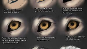 Drawing A Wolf Eye Wolf Eye Tutorial by themysticwolf Deviantart Com On Deviantart