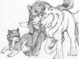 Drawing A Wolf Pup 69 Best Anime Wolves Images Drawings Wolves Amazing Drawings