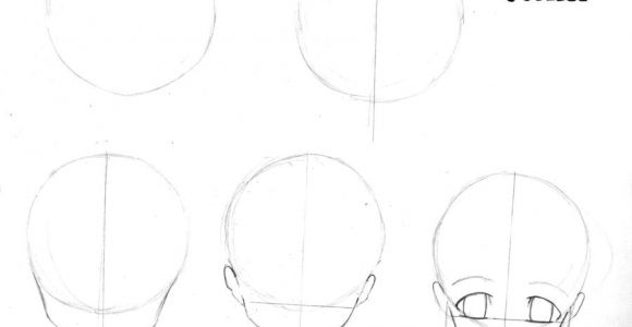 Drawing Anime In Steps Anime Step by Step Drawing Head Drawing Anime Steps Page 1 by
