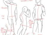 Drawing Anime Proportions 255 Best Draw Human Anatomy Body Proportions Images Drawing