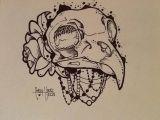 Drawing Bird Skull Bird Skull I Love This Penguin Tattoo Pinterest Bird