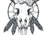 Drawing Bird Skull Pin by Best Graphic Design On Tattoo Designs Tattoos Crow Skull