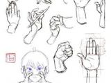 Drawing Cartoon Hands and Feet 734 Best Character Anatomy Hands Images Sketches Drawing Hands