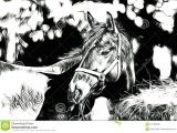 Drawing Cartoon Horse Head Freehand Horse Head Art Design Illustration Abstract Drawing Stock