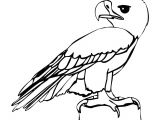 Drawing Cartoon On Computer Eagle Cartoon Drawing In 4 Steps with Photoshop D D N N N soft Cute
