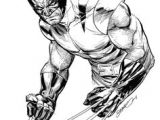 Drawing Cartoon Wolverine 303 Best Wolverine Images Comic Books Art Logan Wolverine Comic Art