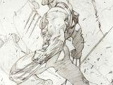 Drawing Cartoon Wolverine Wolverine Ryan Benjamin Marvel Pinterest Skizzen Und Drawing