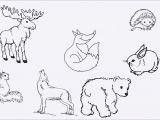 Drawing Cartoons Baby Baby Tiere Ausmalbilder Meilleur De Photographie Tier Ausmalbild