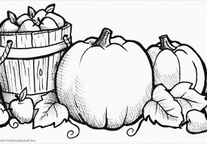 Drawing Cartoons Worksheet Kinder Coloring Worksheets Preschool Coloring Pages Fresh Fall