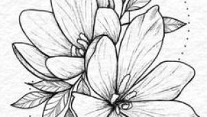 Drawing Chinese Flowers 284 Best Chinese Flowers Images In 2019 Chinese Painting Ink