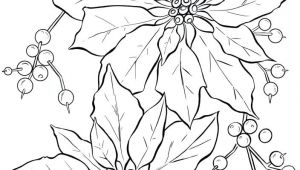 Drawing Christmas Flowers Poinsettia Line Art Christmas Card Ideas Christmas Coloring