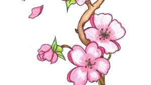 Drawing Colored Flowers Easy Pin by Marvin todd On Drawing Flowers In 2019 Pinterest Drawings