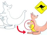 Drawing Cute Animals Step by Step How to Draw Kangaroo for Kids Kangaroo Cuteanimals Drawing