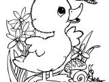 Drawing Cute Man Cute Coloring Pages New Leprechaun Coloring Pages I Pinimg 736x 0d