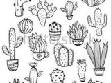 Drawing Cute Succulents Line Drawing Of Cactus Bing Images Tattoos In 2019 Cactus