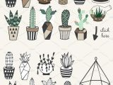 Drawing Cute Succulents Pin by Kendall On Journaling Pinterest Studio Bullet Journals