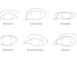 Drawing Different Eye Shapes How to Draw A Pair Of Realistic Eyes Rapidfireart