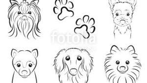 Drawing Dog Hair Fotolia Comi I E I I I E E I Dog Line Drawing by Keko Ka E
