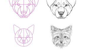 Drawing Dogs Heads Eine Exquisite tonne Hundereferenzen Um Den Text Der Groa Eren