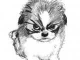Drawing Dogs In Pen and Ink Pin by Colleen Blake On Dog Sketches Pinterest Sketches