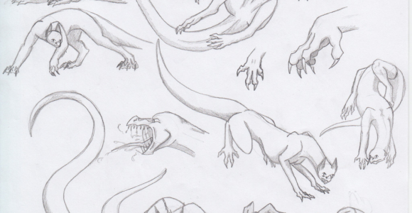 Drawing Dragons Tips Dragon Poses 2 by Triinuarjus Drawing Guides In 2019 Dragon
