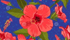 Drawing Exotic Flowers Seamless Hand Drawn Tropical Pattern with Jungle Exotic Hibiscus