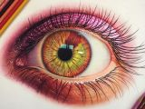 Drawing Eyes Colored Pencil 25 Stunning and Realistic Color Pencil Drawings by Morgan Davidson