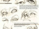 Drawing Eyes On Head Realistic Drawing Reference Dump Zbrush Anatomy Pinterest