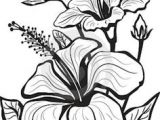 Drawing Flower for Wall 1412 Nejlepa A Ch Obrazka Z Nasta Nky Flower Drawings Drawings