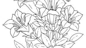 Drawing Flowers and Animals Download and Print Realistic Flowers Coloring Pages for the top