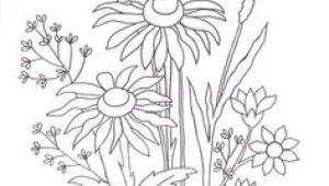 Drawing Flowers for Embroidery 28 Best Line Drawings Of Flowers Images Flower Designs Drawing