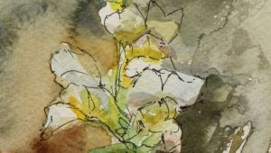 Drawing Flowers for Watercolor Art Card Watercolour Postcard Flower Painting 6x4in Impression