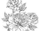 Drawing Flowers From Different Angles 173 Best Drawings Flowers More Images Flower Designs Coloring