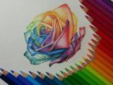 Drawing Flowers In Colored Pencil Rose Color Pencil Drawing by Gaby Sabbagh Rainbows Pencil