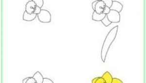 Drawing Flowers Ks2 361 Best Drawing Flowers Images Drawings Drawing Techniques