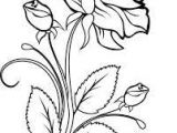 Drawing Flowers On Wood Image Result for Wood Burning Vine Patterns Woodworking