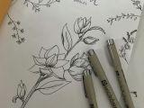 Drawing Flowers Quotes Plants Doodles Plants Draw Botanical Botanicalillustration